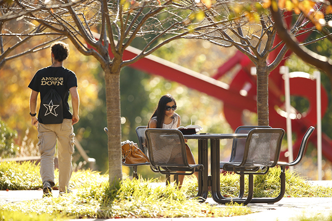 Students hang out on the plaza near Ingram Studio Arts building amid fall colors.(John Russell/Vanderbilt University)