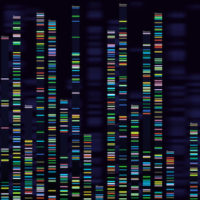 Genomic analysis visualization. Dna genomes sequencing, deoxyribonucleic acid genetic map and genome sequence analyse. Bioinformatics forensics data or dna radiographic testing vector concept (Genomic analysis visualization