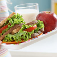 Close-up of child's lunch tray containing a sandwich made from whole wheat bread and lots of veggies, plus an apple and a cup of milk