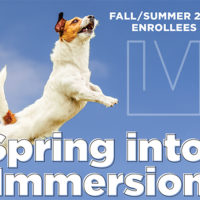 Spring Into Immersion 2020