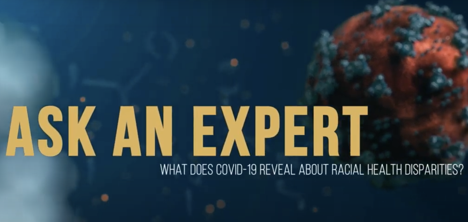 Ask an Expert. What does COVID-19 reveal about health disparities