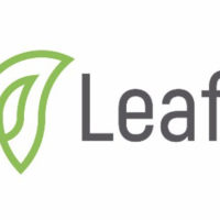 Leaf Global Fintech logo