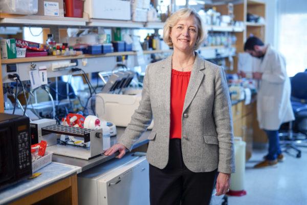 Interim Chancellor and Provost Susan R. Wente (Vanderbilt University)