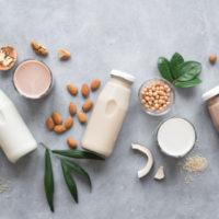 plant based milk soy
