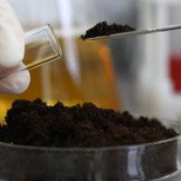 soil-microorganism