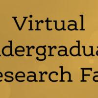 Virtual Undergraduate Research Fair