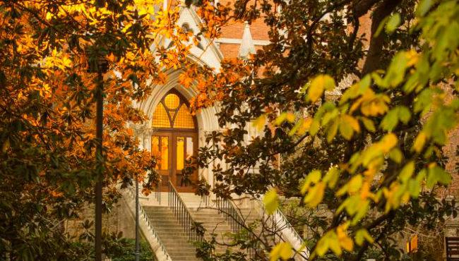 Photo for Vanderbilt announces University Diversity Council members for 2020–21