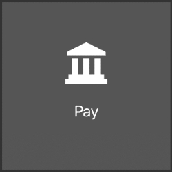 Oracle pay icon