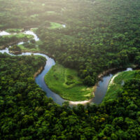 Amazon rainforest river