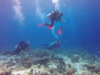 Sirenas expedition members explore the ocean floor near Curacao, an island in the Caribbean
