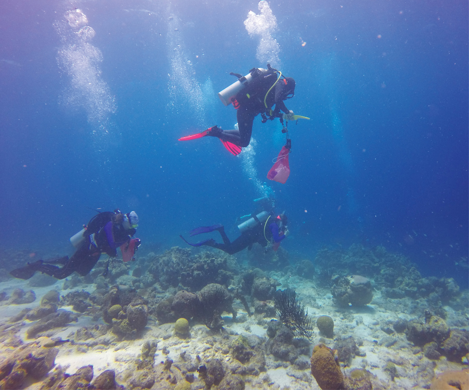 photo of Sirenas divers in Curacao (Sirenas Expedition Team)