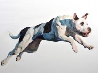 Leapin' Lucy: Bull Terrier Brings Top Honors to Hannah Stahl, BA'12, at Westminster