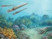How to Explore the Prehistoric Past