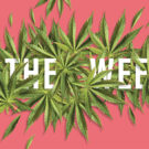 "illustration featuring marijuana leaves and the words ""in the Weeds"""
