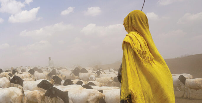 photo of a woman goatherd making her way to a UN aid relief camp in Kenya
