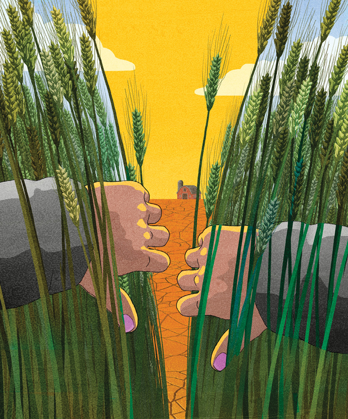 illustration of two hands pulling back green crops to reveal a dry barren wasteland