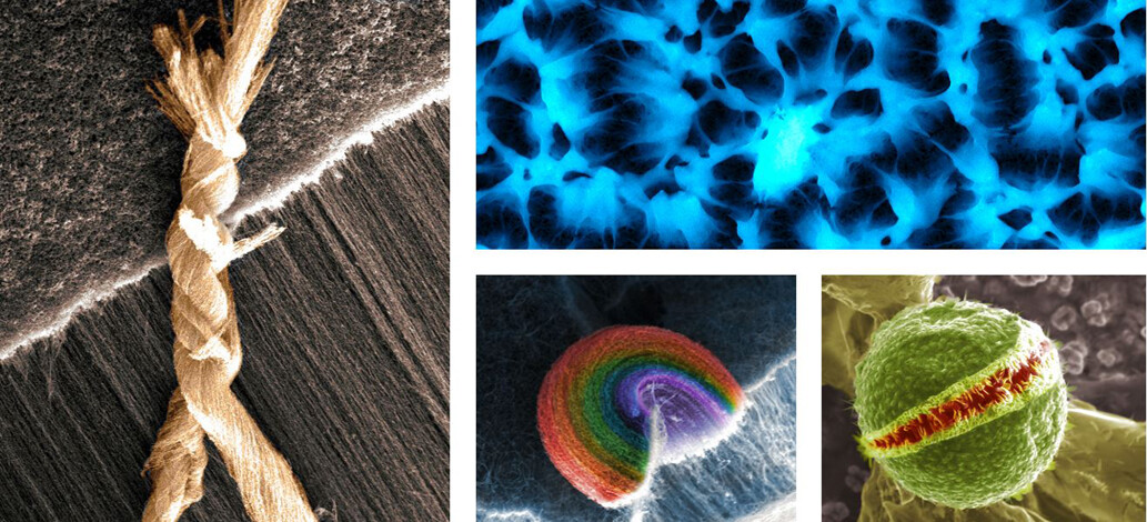 Win $50 - VINSE Annual Image Competition Underway