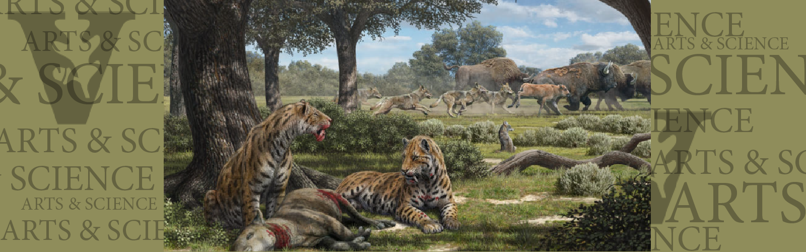 Paleontologist Larisa DeSantis explains why we have coyotes, not saber-toothed cats at LaBrea Tar Pits