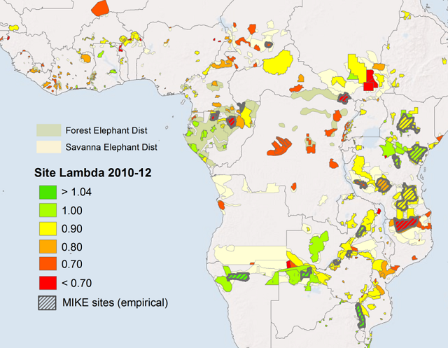 elephant poaching map