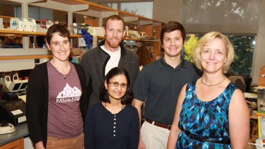 mRNA export defects underlie the lethal motor neuron disease LCCS1