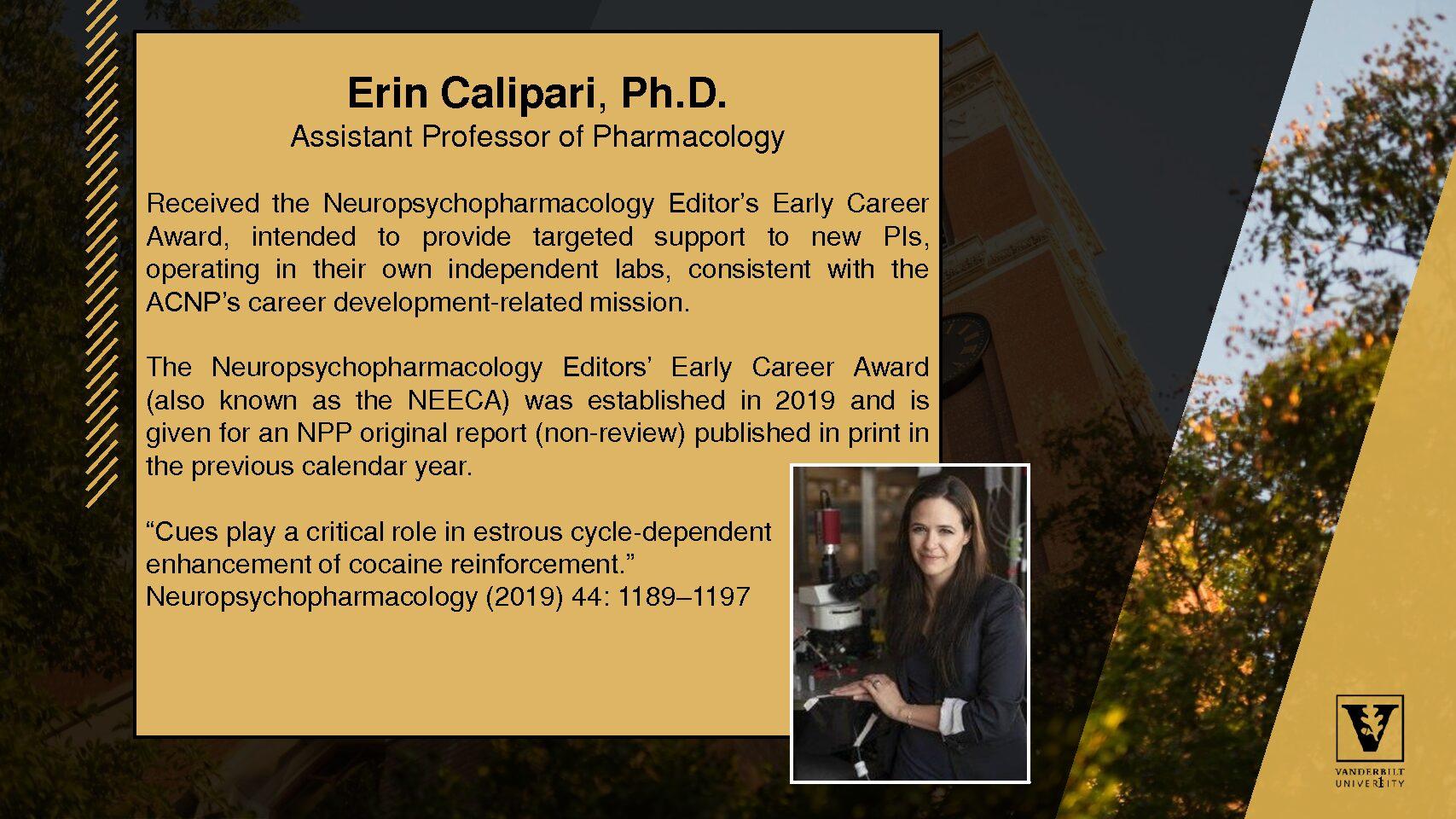NeuropsychopharmacologyEditors' Early Career Award 2020 Calipari