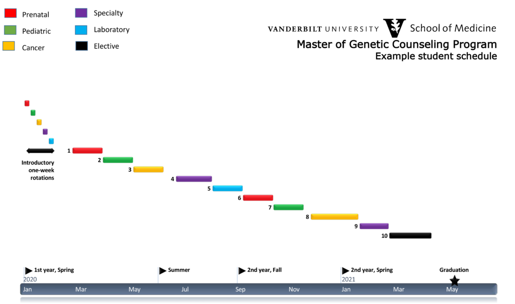 MGC Clinical Rotations Timeline