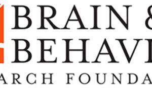 Three neuroscience postdoctoral fellows win 2019 NARSAD awards