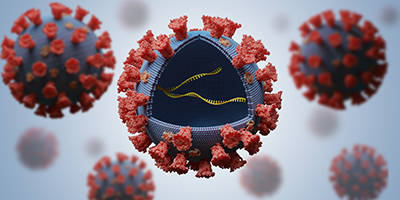 3D rendering of a few RNA viruses. The one in the center has a quarter of the top half removed, forming a little window into the inside. Inside is a few molecules of RNA. The viruses are blue/gray with red proteins on their surface (much like the spike protein of SARS-CoV-2), and the RNA molecules are yellow.