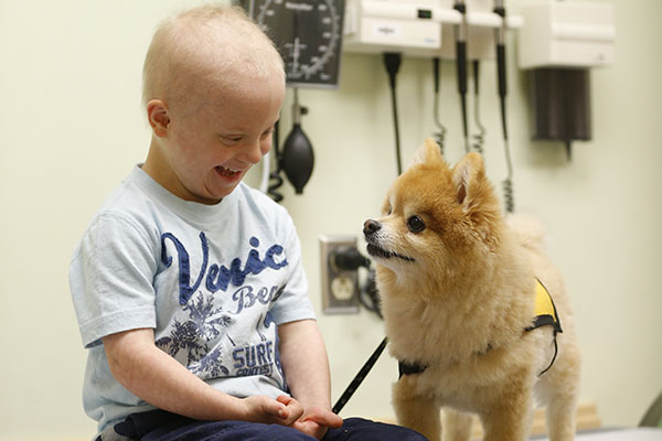Gilmer's research about dogs helping children with cancer goes global, thanks to CNN