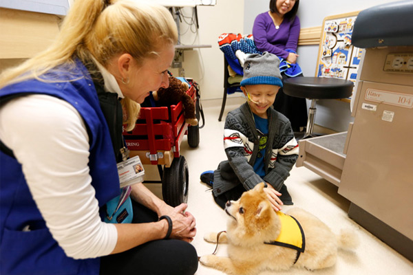 Study tracks pet therapy's impact on young patients