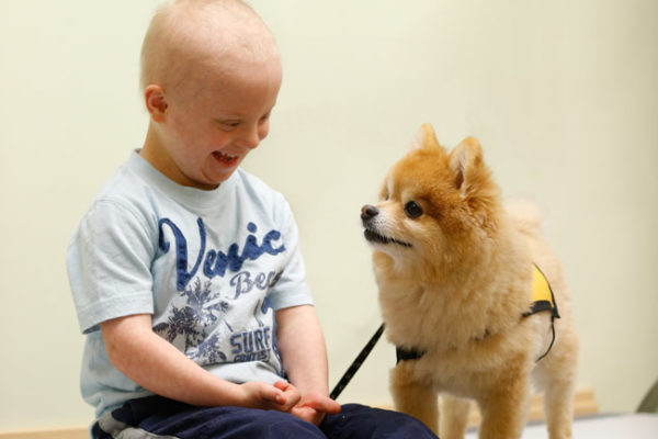 A  Patient's  Best  Friend: The impact of animal-assisted therapy on children with cancer