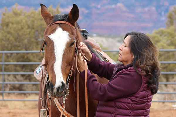 Alumna Annie Moon puts the bridle on her horse, August Moon.