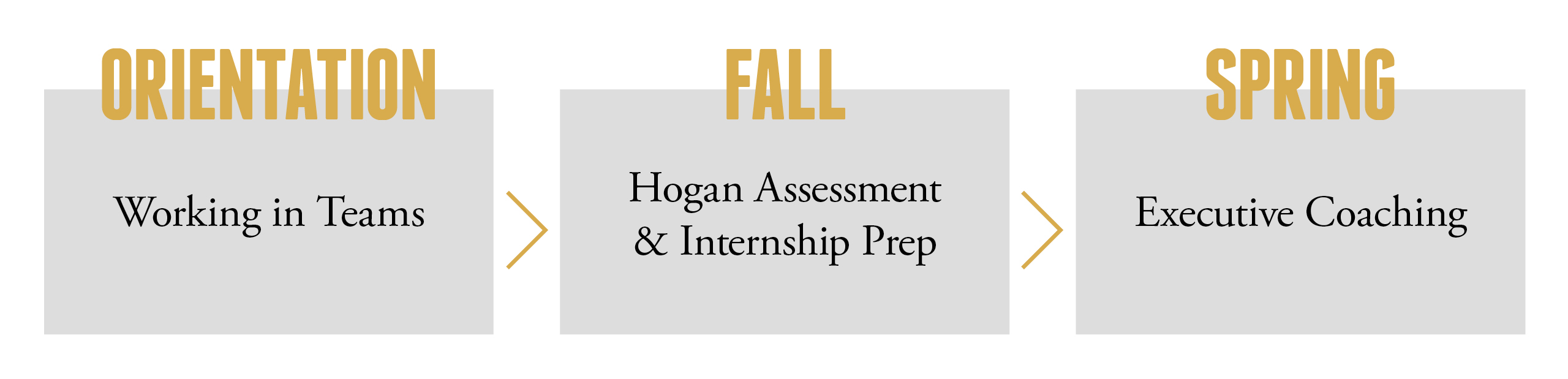 Vanderbilt MAcc students benefit from the Hogan Assessment and executive coaching in LDP.