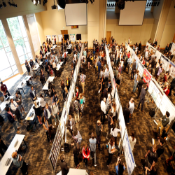 birdseye view of rows of presenters' posters