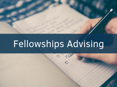 Click here to schedule an appointment for fellowships advising