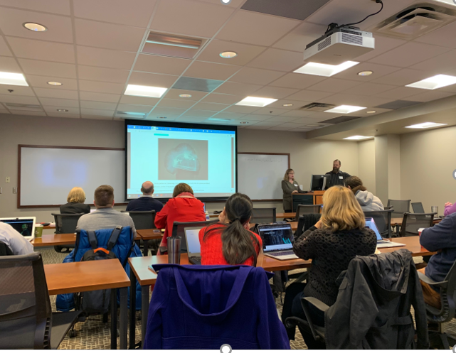This photo, taken at the IIF workshop, shows a classroom with attendees watching a presentation. The shot is taken from the back of the room, so you see people's backs and the projector screen.