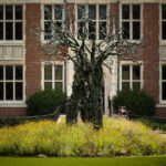 The Tree of Learning