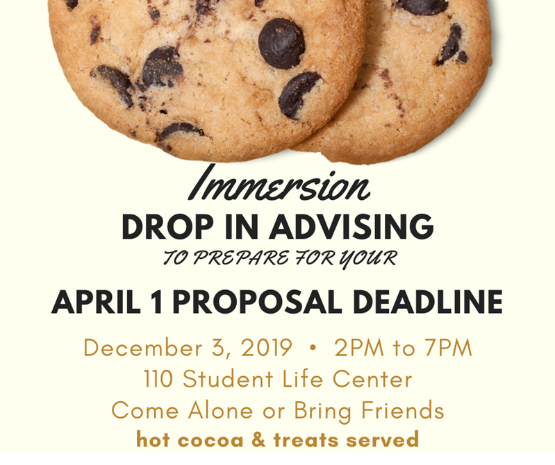 Immersion Drop-in Advising