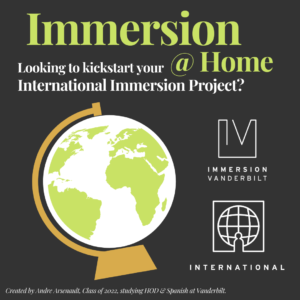Graphic of a globe with large text advertising the International Pathway of Immersion Vanderbilt