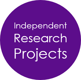 independent research projects