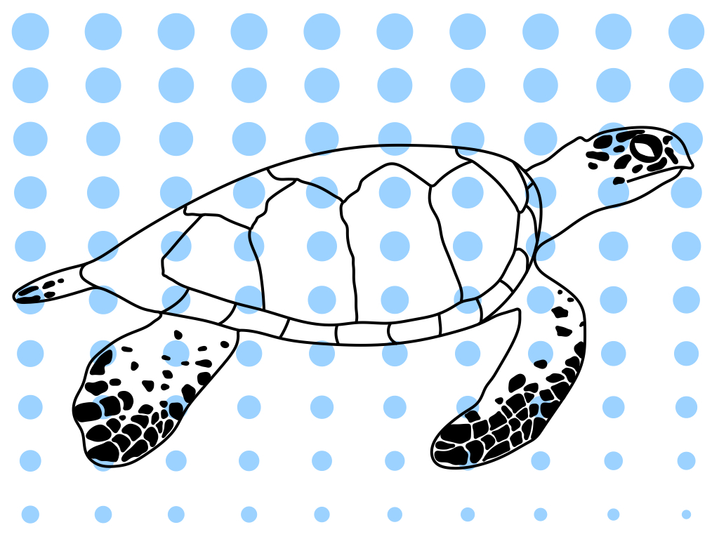 A black-and-white drawing of a hawksbill turtle, overlaid with light-blue dots that gradually decrease in size from the top to the bottom of the picture