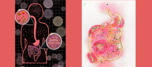 photo illustration showing two pieces of art by Skylar Cuevas: one showing a stomach and intestines, and the other showing an outline of a human body with intestines and an inset image of food
