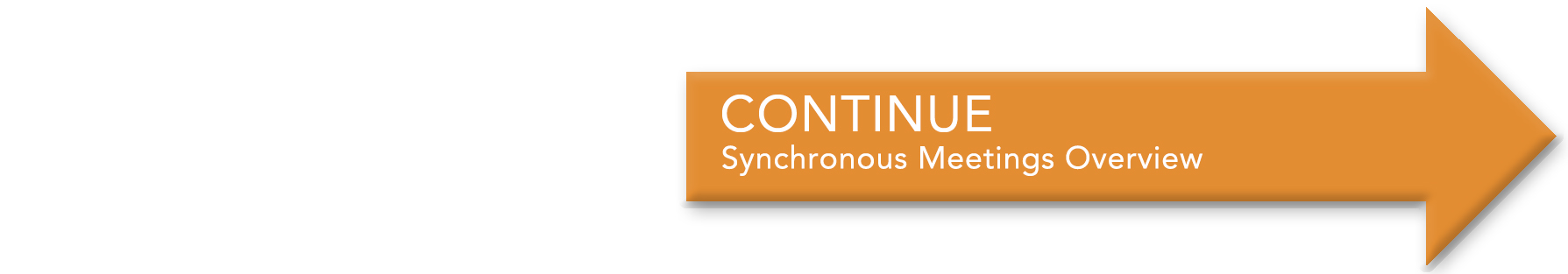 continue to Synchronous Meetings Overview