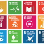 sustainability goals of the UN