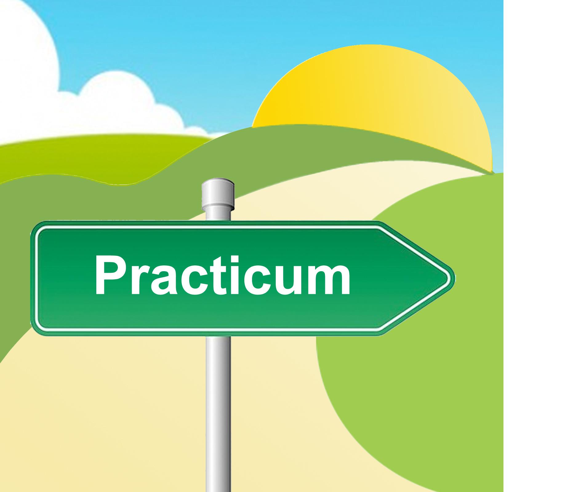 practicum2