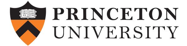 Full-Princeton