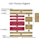 LSO+Process_Diagram-Revised-06-18-2018